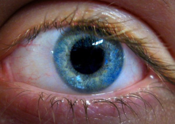 deteccion de esquizofrenia con examen ocular