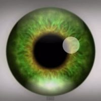 Ilusión óptica alucinante