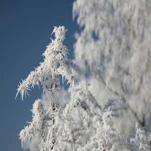cambio físico congelamiento del agua