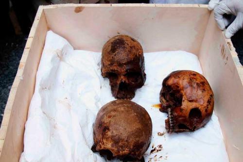 restos oseos hallados en sarcofago egipcio negro